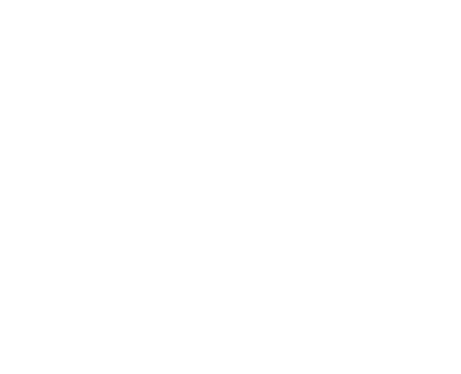 Future View Videoproducties